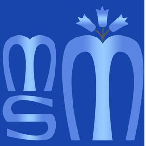 logo-msm2